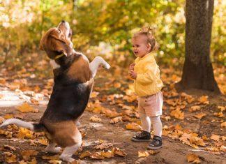 BORAVAK DJECE NA ZRAKU 8 dobrih razloga zbog kojih djeca treba što više da borave u prirodi i na otvorenom
