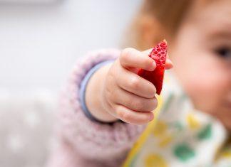 Bobičasto voće u ishrani djece Kad beba smije jesti jagode, maline... mamaklik.jpg
