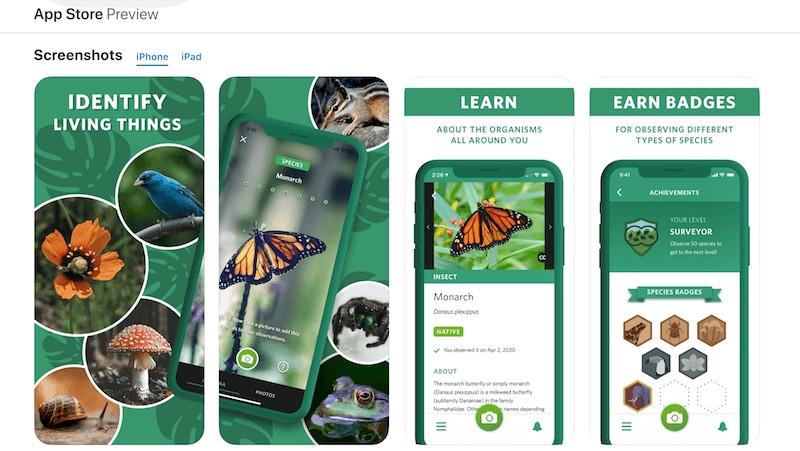 najbolje-aplikacije-za-veliku-djecu-i-tinejdžere-mamaklik.jpg
